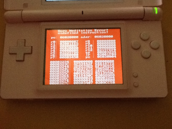 A Guru Meditation Error screen in DSOrganize on a pink DS Lite.